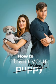 pelicula How to Train Your Husband