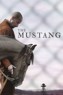 pelicula The Mustang